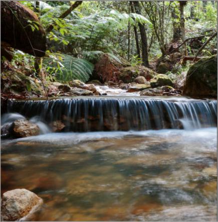 river-stream